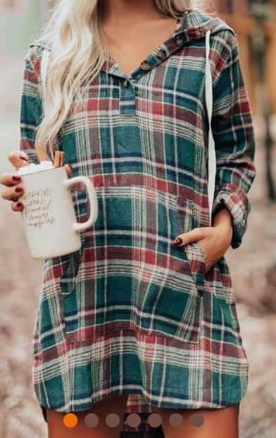 Plaid Dress (hood)