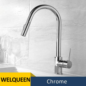 Kitchen Faucets Brass Pull-Out Faucet Cold&Hot Water Single Handle Single Hole Kitchen Mixer Tap Two Water Outlet Modes - WELQUEEN