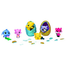 Load image into Gallery viewer, HATCHIMALS Colleggtibles Series 5 4 Pack & Bonus, Mixed Colours - iBuy Africa