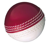 Load image into Gallery viewer, Gunn & Moore Skills Cricket Ball - iBuy Africa