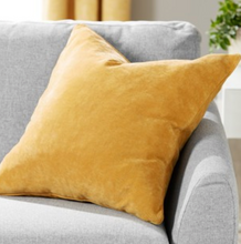 Load image into Gallery viewer, Soft Velour Cushion - Assorted Colours - iBuy Africa