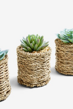 Load image into Gallery viewer, Set of 3 Artificial Succulents in Woven Pots - iBuy Africa