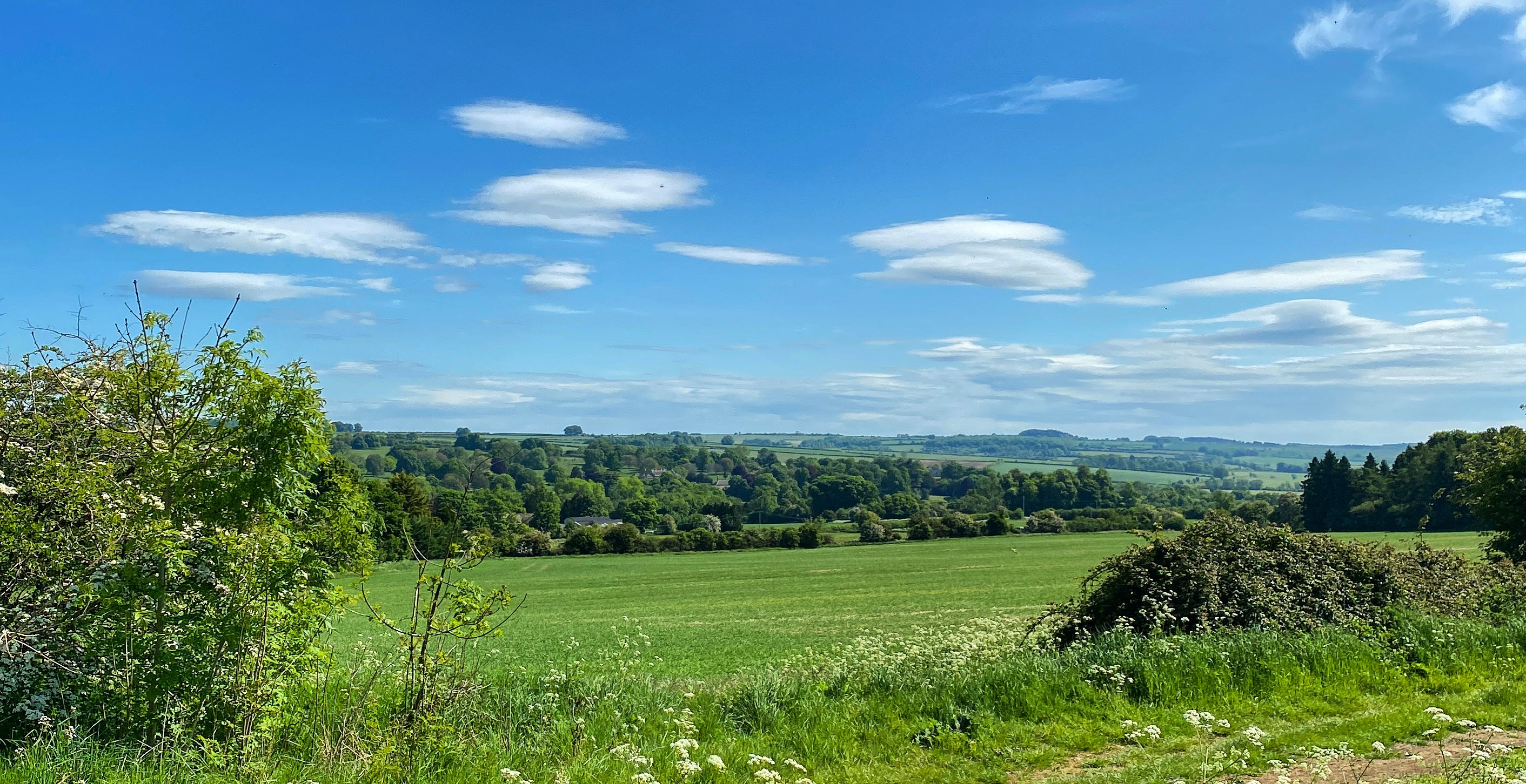 cotswolds photograph landscape Teddy McDonald contemporary fine art