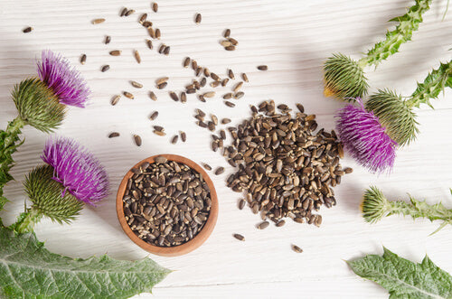 Milk Thistle Seeds for Boosting Immune System - 300 Grams (60 Servings) + 100 ML Bottle of Herbal Hand Sanitizer Free (Stay Safe)