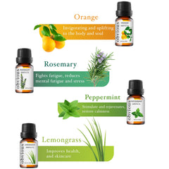 Top 8 Essential Oils for Aromatherapy - Therapeutic Grade Oil Sampler Gift Set (10ml bottles)