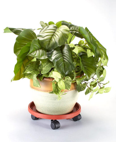 Rolling Potted Plant Movers - FLJ CORPORATIONS