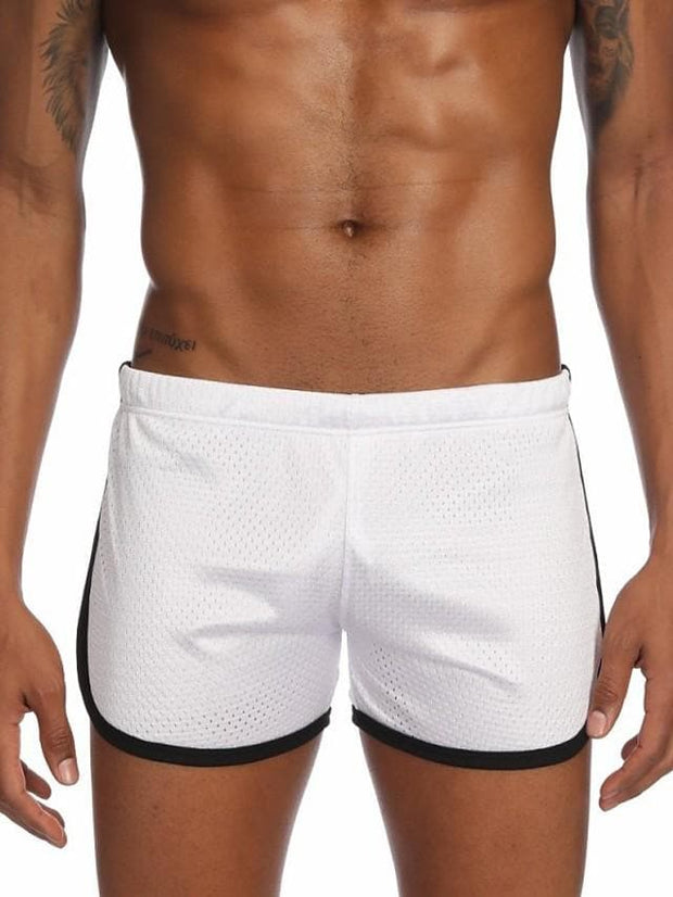 Men's Mesh / Basic Boxers Underwear / Briefs Underwear - Normal Low Waist Light Blue White Black M L XL - FLJ CORPORATIONS
