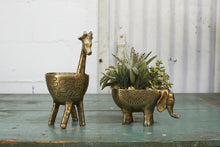 Load image into Gallery viewer, Gia Giraffe Planter