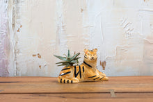 Load image into Gallery viewer, Troy the Tiger Ceramic Pot