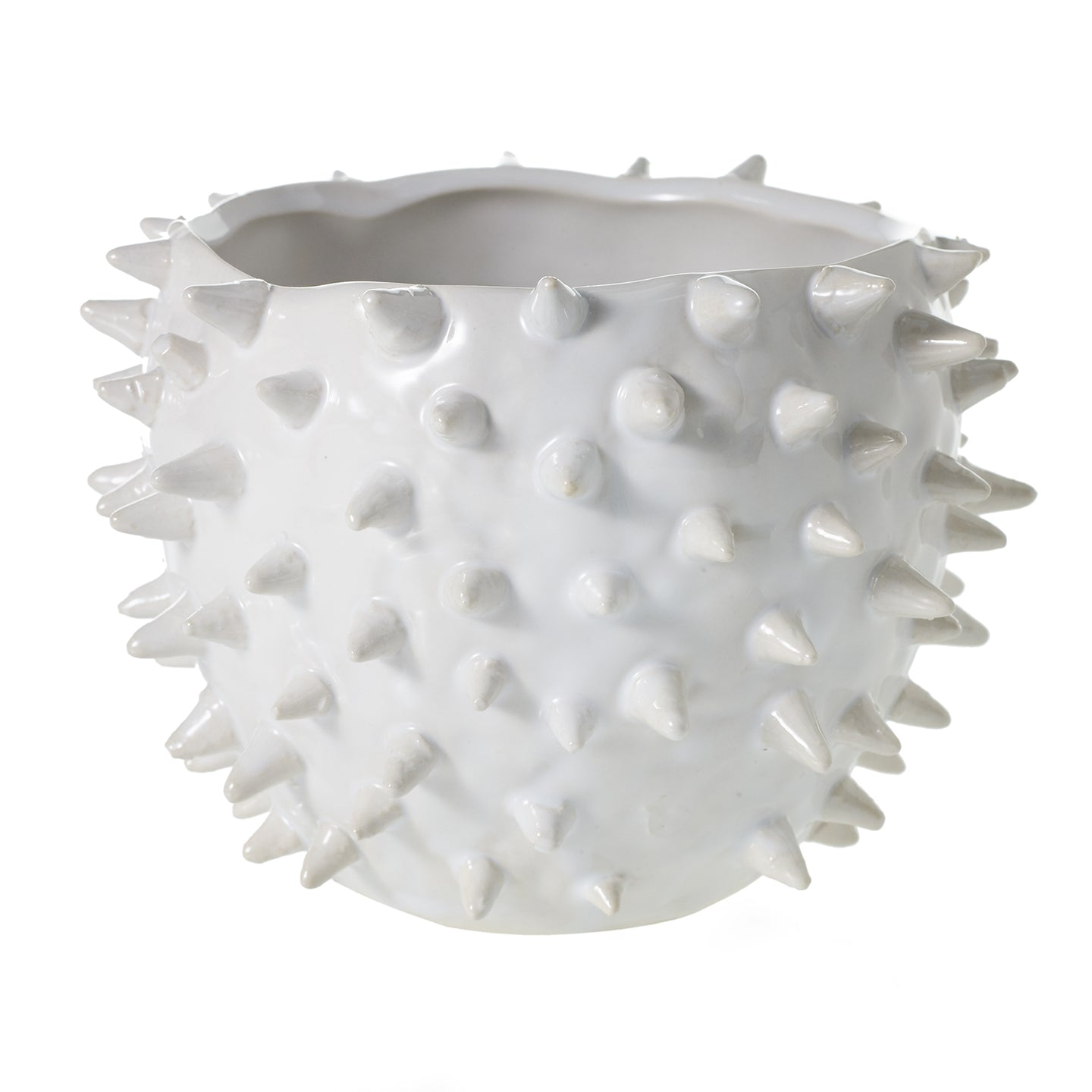 Cacti Ceramic Spiked Pot Medium