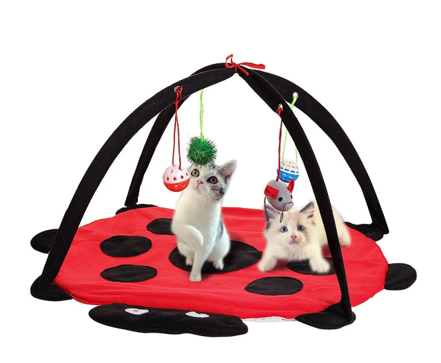 Cat Activity Exercise Mat