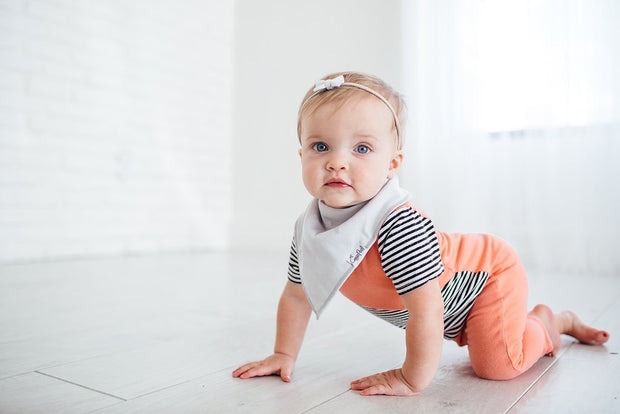 Baby Bandana Bibs - Grey Basics - Copper Pearl - 5