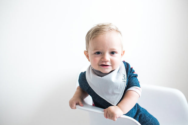 Baby Bandana Bibs - Grey Basics - Copper Pearl - 2
