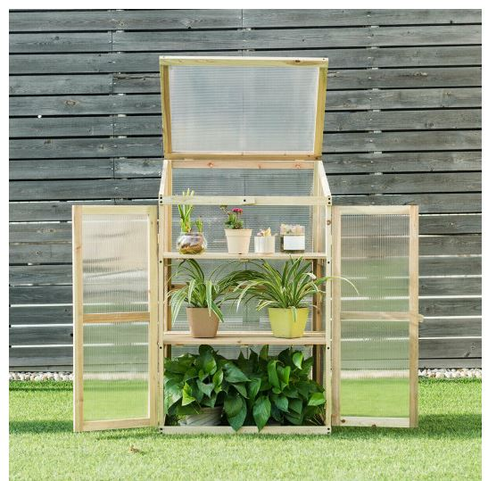 Greenhouse sitting on lawn with green plants inside its open doors