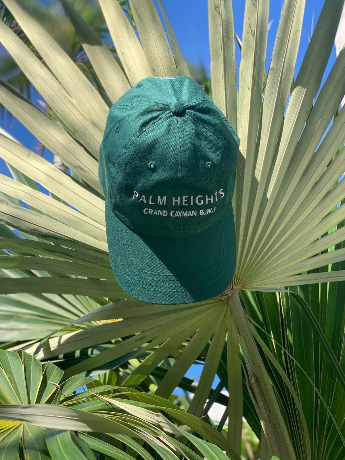 Palm Heights baseball hat green