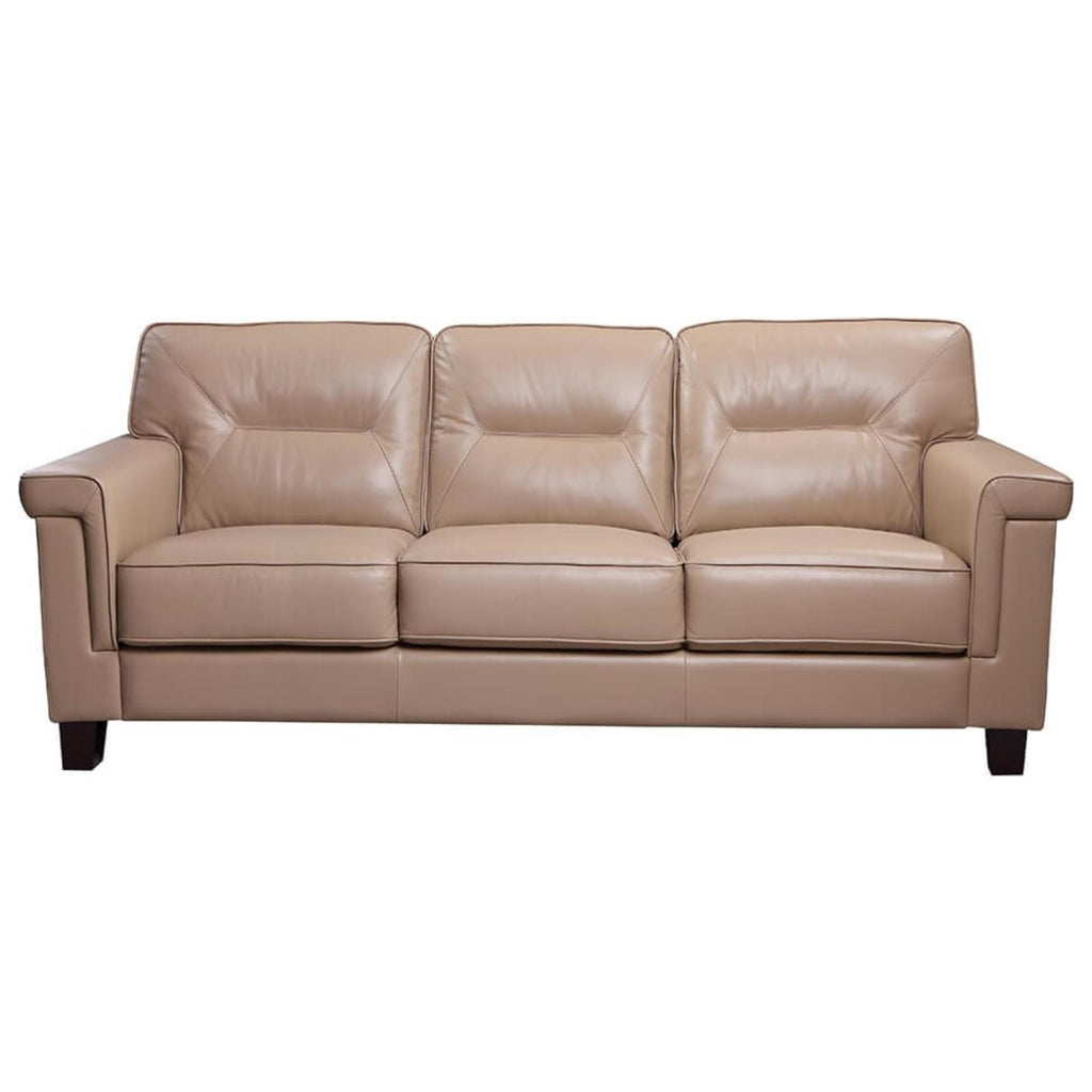 Demoine Sofa, Sofa, Leather Italia - Adams Furniture