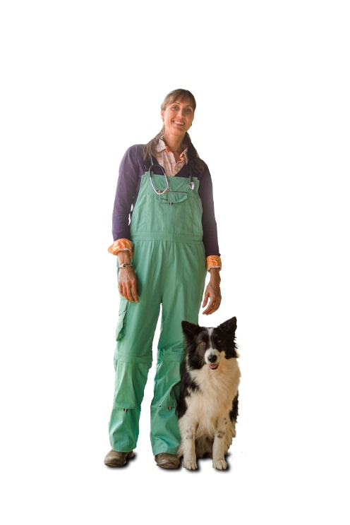 Rosies Classic Overall | Sea Green (Close Out!)