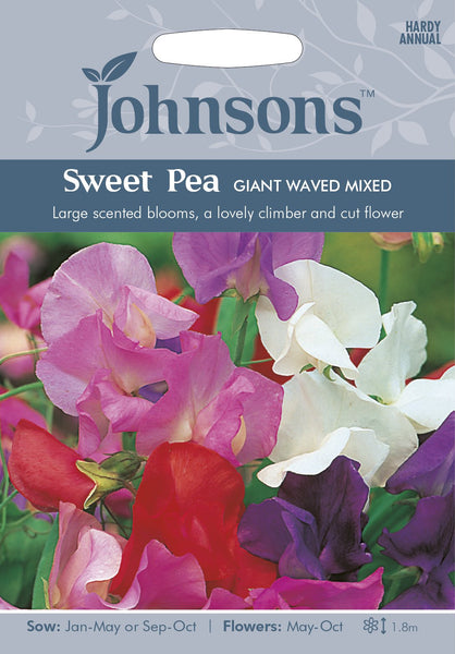 SWEET PEA Giant Waved Mixed