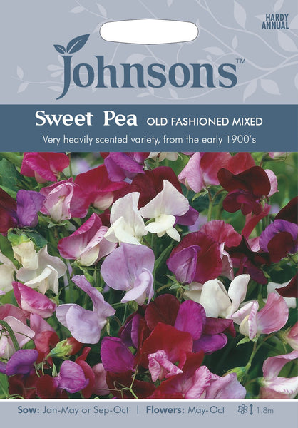SWEET PEA Old Fashioned Mixed