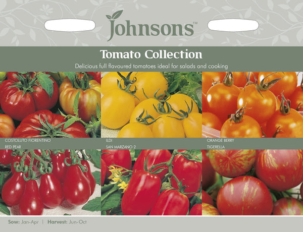 TOMATO COLLECTION