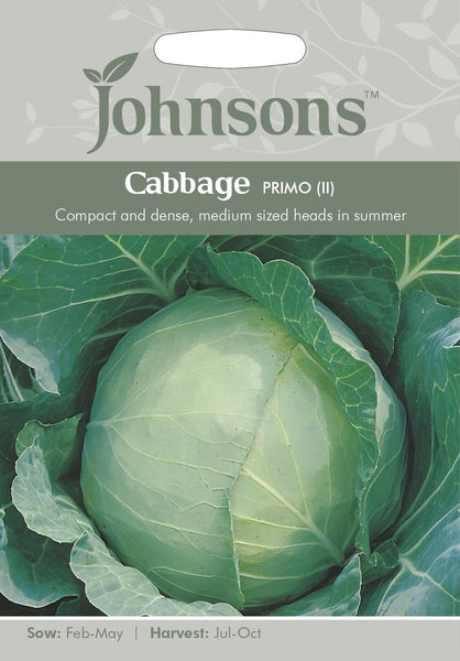 CABBAGE Primo (II)