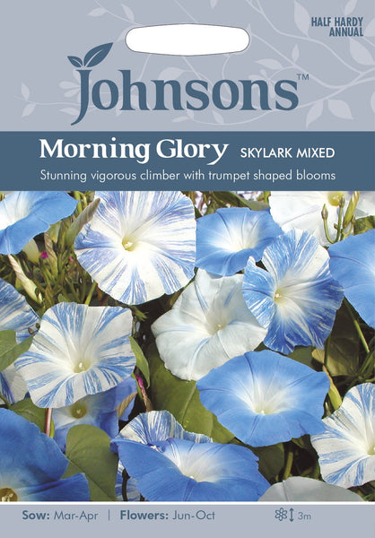 MORNING GLORY Skylark Mixed