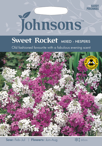 SWEET ROCKET Mixed - Hesperis