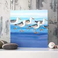 Greeting Card -Herring Gulls - Blank
