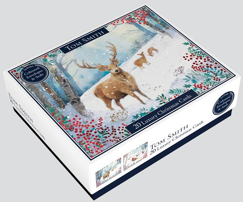 BOX 20 WINTER SCENE CARDS