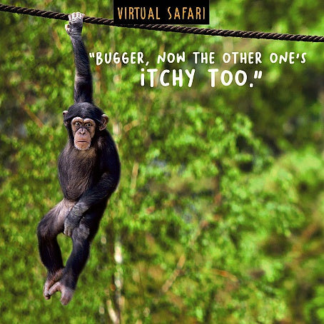 Virtual Safari - Birthday Card