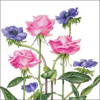 Greeting Card -Roses & Anemones- Get Well Soon