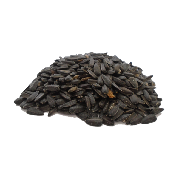 1lb Bag Black Sunflower