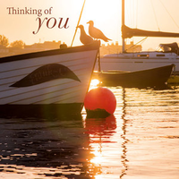 Greeting Card - Thinking of You - Sundown & Seagulls - BLANK