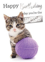 Birthday Greeting Card - Open - Cat & Ball of Wool