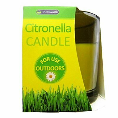 1 x Citronella Candle
