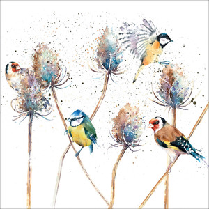 Greeting Card -Birds and Teasels- Blank