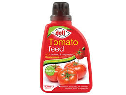 Doff Tomato Feed Concentrate 500ml