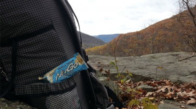 NuGo Hikes in Loyalsock State Forest