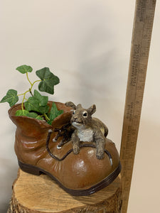 Squirrel On A Shoe