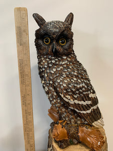 Owl- Great Horn