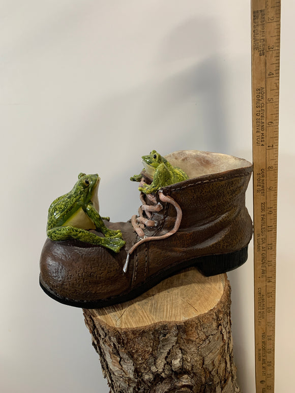 Frog- Frogs In A Shoe