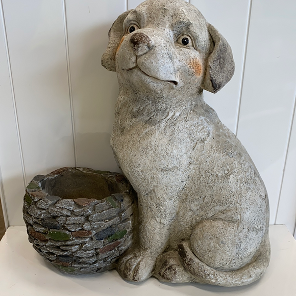 Dog or cat planter