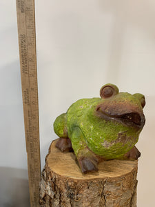 Frog- Green And Brown