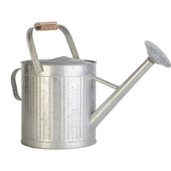 2-Gallon Vintage Watering Can with Wood Handle