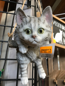 Grey tabby cat hanging