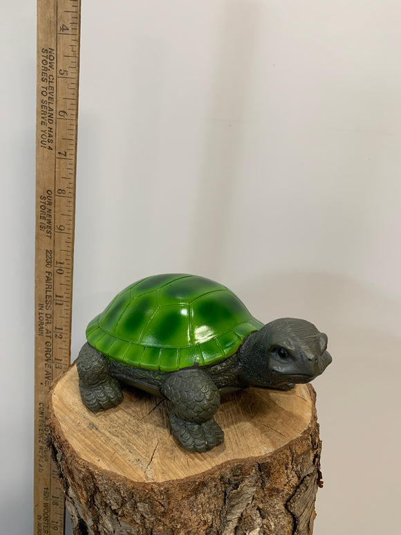 Turtle- Green Shell
