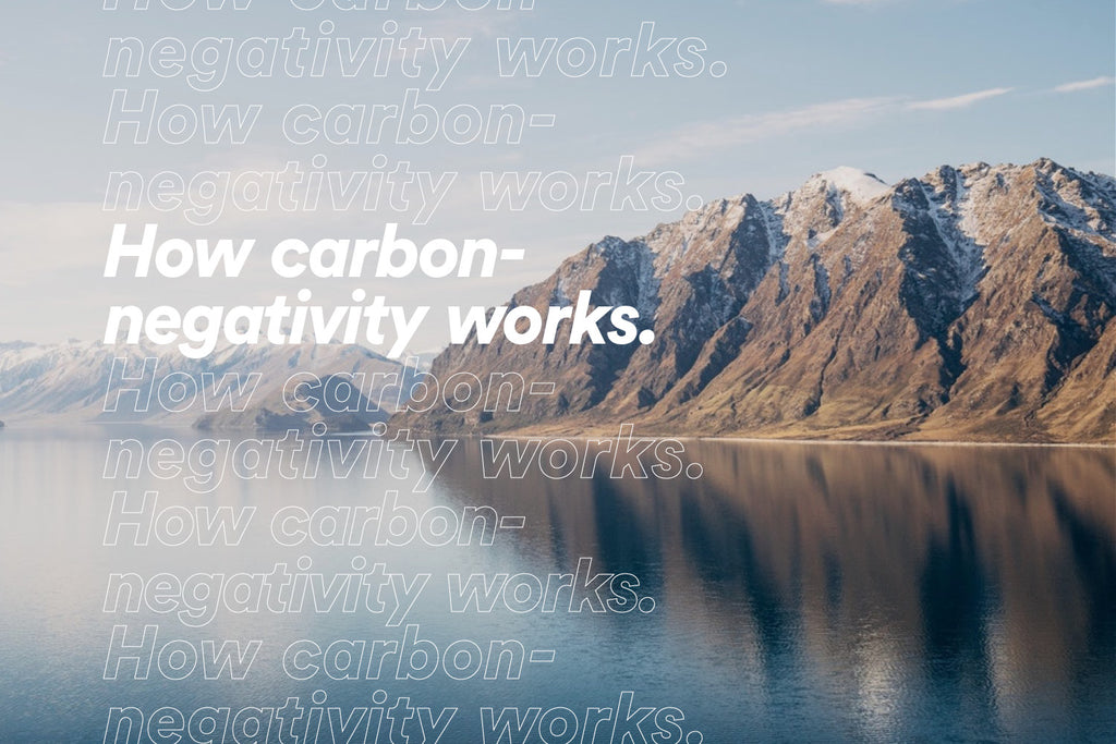 How carbon-negativity works.