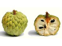 Custard Apple (Sweetsop) per Kg
