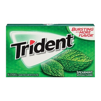 Trident Spearmint Gum 14pc