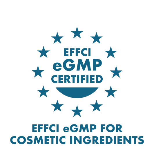 EFCI eGMP for cosmetic ingredients icon certification